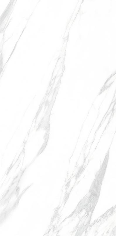 大花白 MT18901