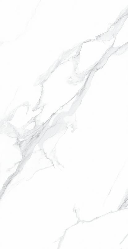 百达翡丽 MT18925